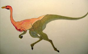 Ornithomimus Bullatus Color by Raptor-Chick