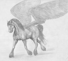 Pegasus by hartlover