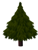 Christmas tree by omagrandmother