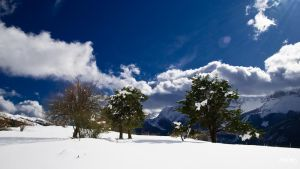 neige de Paques by rdalpes