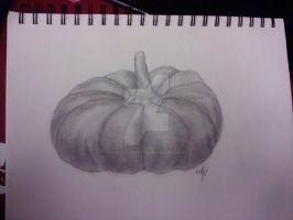 Pumpkin Sketch by arcane-depiction