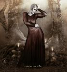 The Gate by vampirekingdom