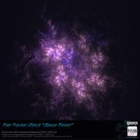 Free Fractal Stock Space Flower (transparent PNG) by Hexe78