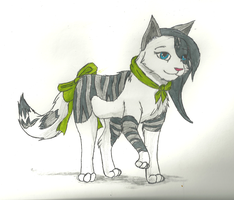 Claire the cat by pokemonlover5673