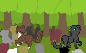 Leafpool and Crowfeather by TeenBeat