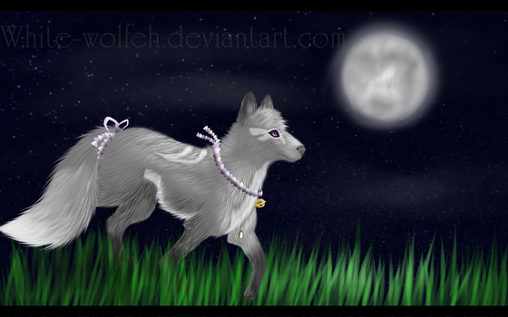 T: Dancing in the moonlight ++SPEEDPAINTING++ by White-wolfeh