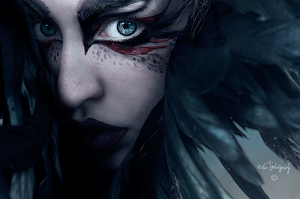 The Raven by EclipxPhotography