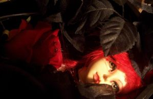 BJD Tristians Red Rose or for my Darling 1 by darkmousi
