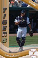 Baseball Cards-Posters 1 by djbahdow-2101