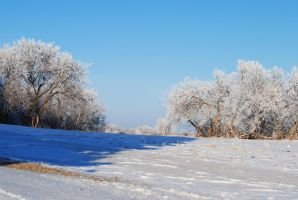 Winterscape 20 by TWO--GUNS