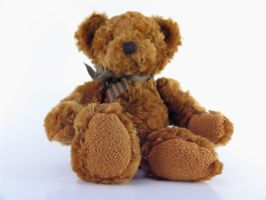 Stock - Teddy Bear Series 2 by mystockphotos