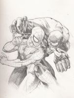 SPidey vs venom by jjakec