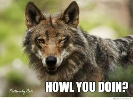 So Howl you doin? by Foxpackz