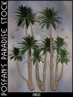 Palms 002 by poserfan-stock