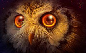 Owl mystery by exobiology