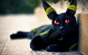 Realistic Pokemon: Umbreon! by Deathofdawn