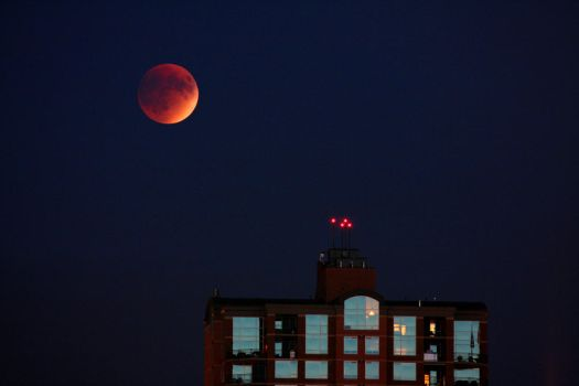 Blood moon 1 by Wolfie-83