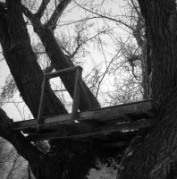 The Forgotten Tree House by rosesnsuch