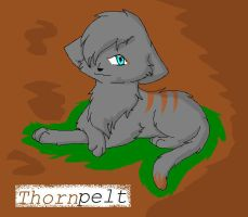 thornpelt by blackmuttofdoom
