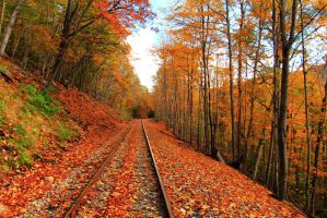 Autumn Railroad by Celem