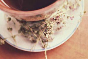 Tea is a picnic indoors by FredyHannover