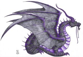 Imagination Expand 3 Dragon by Scellanis