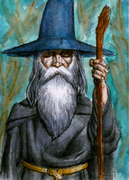 The Wizard - Color by mentat0209