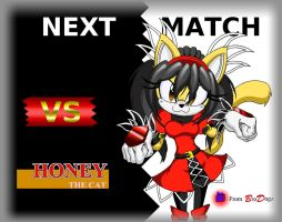 Honey The Cat: Next Challenger by DarkSonic250