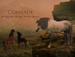 Comrade: Witness by Dizzlet