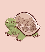 The Turtle by Renca-W