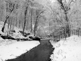 Winter Stream by flowersteph