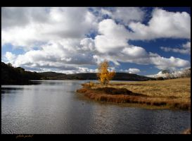 lake in autumn by Zlata-Petal