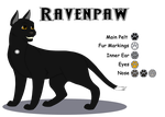 Character Sheet - Ravenpaw by Winterstream