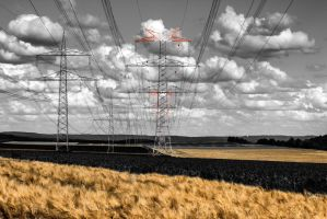 Power lines by Qo-oQ