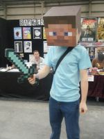 Supanova M. 2011 - MineCraft by RainfallClan