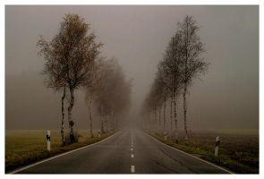 Misty Road by LLr0cks