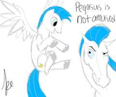Pegasus is not Amused by Keytarist