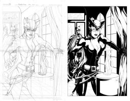 Catwoman Inks by WhipsmartMcCoy