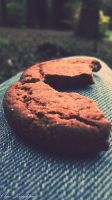 Ginger Biscuit by Clerdy