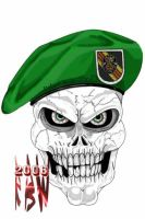 Green Beret Skull by kreeders