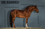 The Barroco Horse by CalyArt