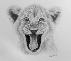 little lion cub by Horsenart95