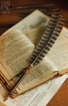 Calligraphy Quill by Nymla