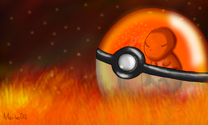 My little Charmander by mariko014