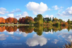 Autumn Reflections 2 by sweetcivic