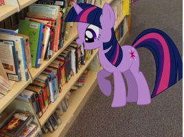 My Little Twilight SParkle: Human literature... by JudgementMaster