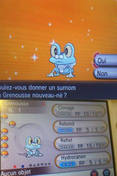 A perfect shiny : FROAKIE ! (+Pkm GiveAway ?) by MimiPony