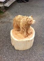 bear chainsaw carving by Chainsaw-M-Carvings