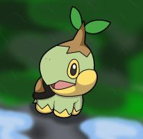 Turtwig in the forest by RikkitheTurtwig