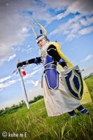 FF DISSIDIA Warrior of LIGHT by karlonne